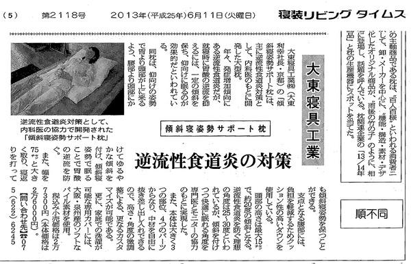 20130611sinnsou.jpg